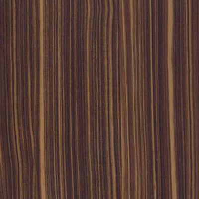 Thermofoil colors_0000s_0002s_0004_Ebony Gloss